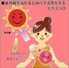 ビタミンD.png