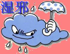 湿邪.png